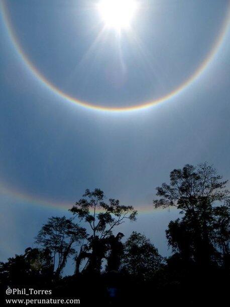 *NEW* LIMA PENAMPAKAN ANEH DI AMAZON GAN!!!!!