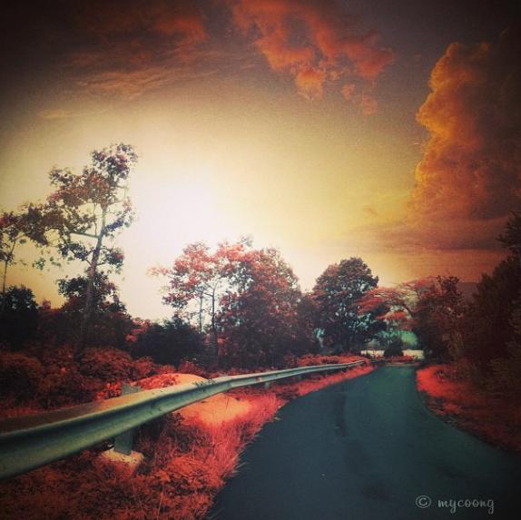 Kagum Liat Hasil Karya Photography