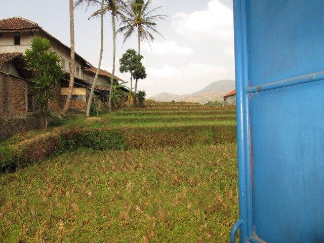 Jual Rumah Murah Cicalengka Bandung (beserta sawahnya)