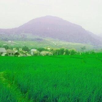 Sentul City - Terrace Hills - Tahap 2