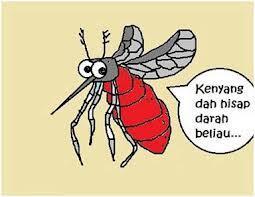 Kenapa Nyamuk Suka Terbang Dekat Telinga Sebelum Menggigit kita..??
