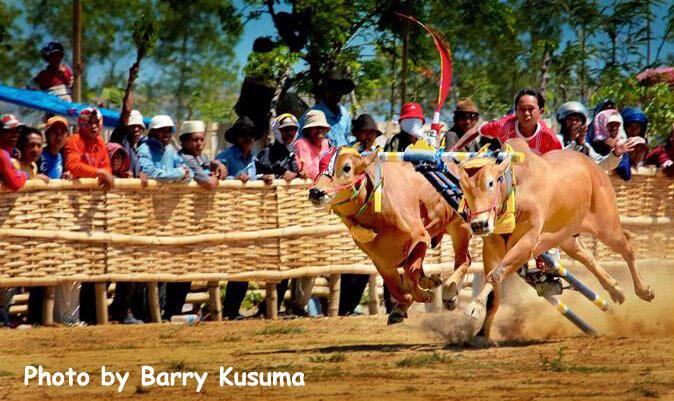9 Festival Budaya Terbaik di Indonesia.
