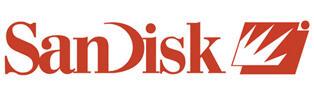 Jual Flashdisk Sandisk Original & Murah di Bekasi