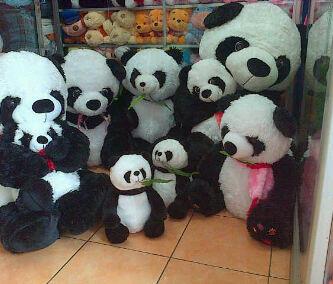 Terjual jual boneka panda murah meriah  19c55b770d