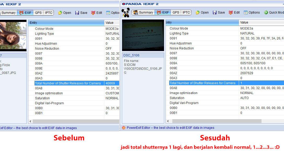 nikon d60 shutter count software