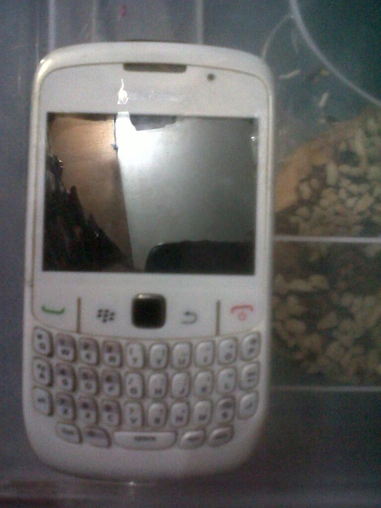 blackberry 8520 bb gemini white