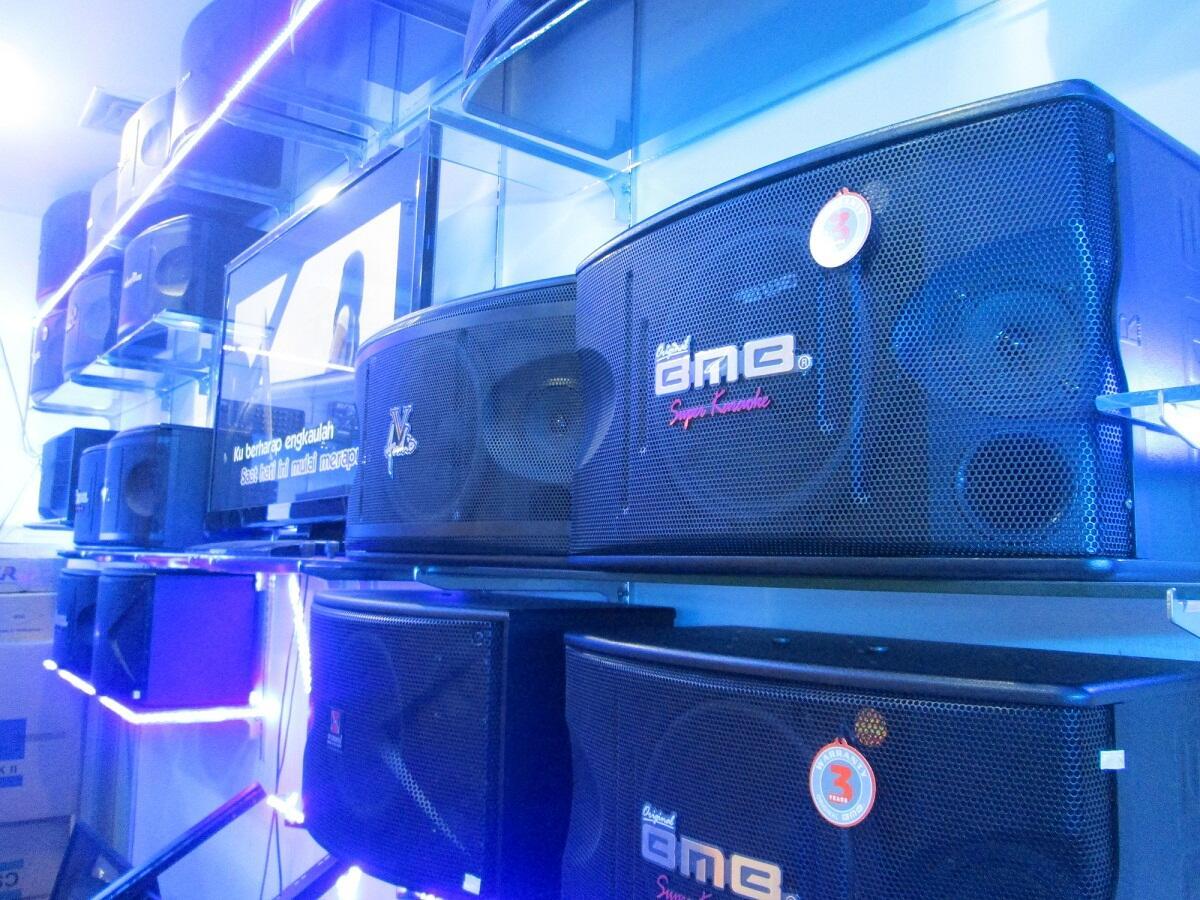 SPEAKER BMB CS-550 PRO MK II NEW PRODUCT