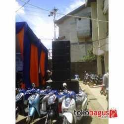 Speaker gantung linearay