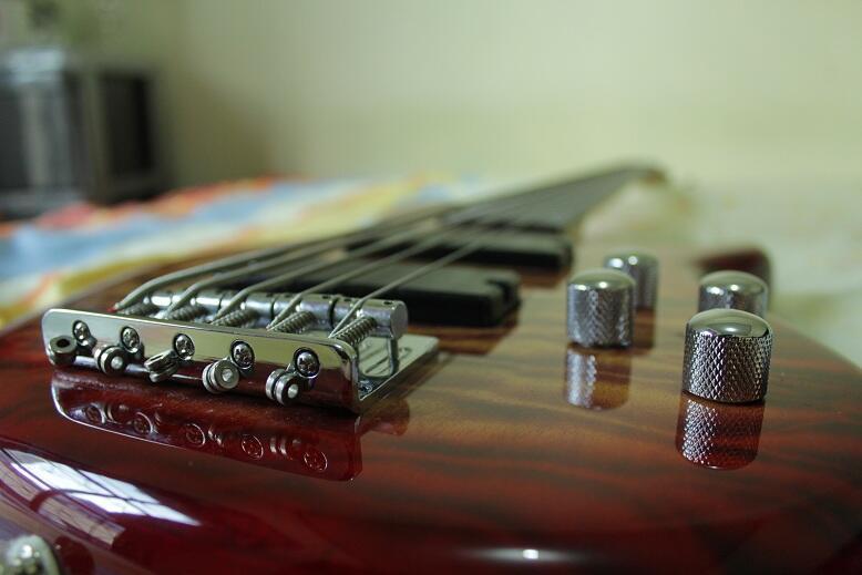 Bass 5 Senar CORT mulus abis