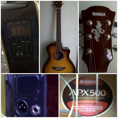 Gitar Akustik Elektrik Model APX500 (Custom)