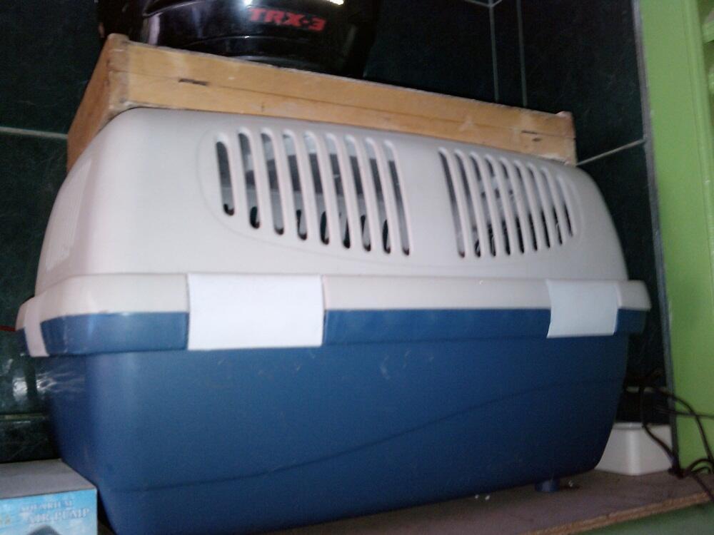 kandang kucing, kandang Sugar glider / burung, dan travel box