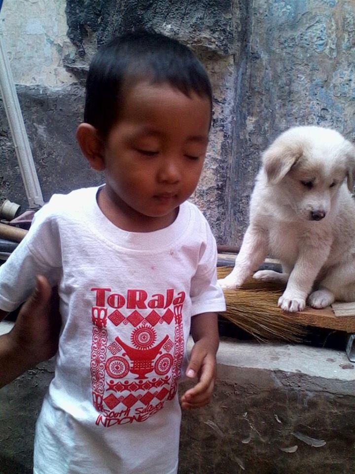 Anak anjing (PUPIES) (WHITE)