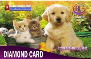 Butuh Supplier Petshop Hubungi Kami Segera Dapatkan Harga Super Murah