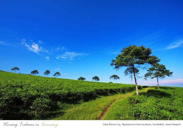 "INDONESIA ""Surga Kecil di Tengah-Tengah Pulau Jawa"""