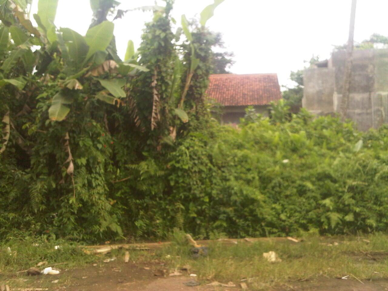... jual tanah di jalan cipedes kel.nagarasari kec.cipedes dekat sentra  batik Tasikmalaya ... 7f009a37e2