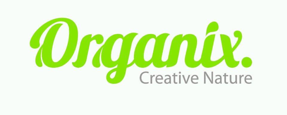 Organix Digital Agency (Web Development, Software & Application Media Development)