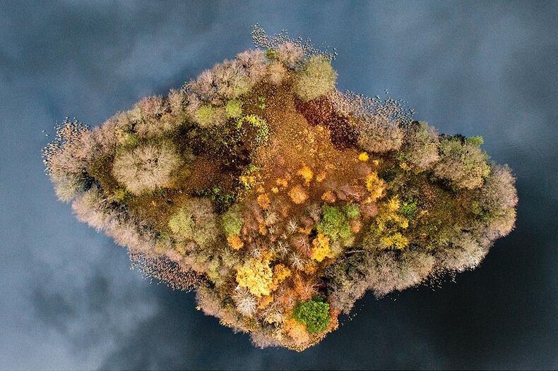 Foto-foto Menakjubkan Hutan di Polandia pada Musim Gugur [Karya Kacper Kowalski]