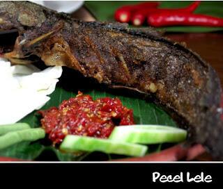 HATI-HATI MAKAN PECEL LELE DI MONAS !!! (Orang Surabaya wajib masuk!)