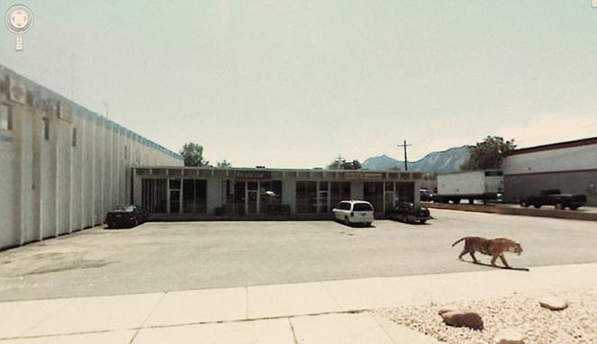 Foto-Foto Aneh Dari Google Street