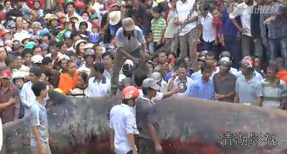 Video Monster Raksasa Di Vietnam Bikin Heboh