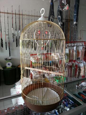 kandang emas lovebird