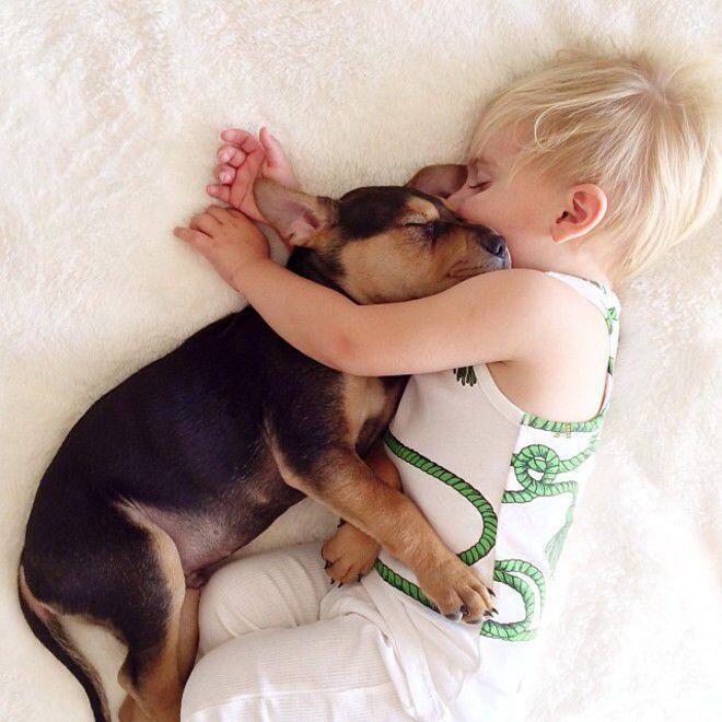 ~๑๑.GEMESIN ! Balita dan Anjing Kesayangan Tidur Siang.๑๑~