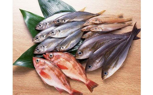 Rahasia Nelayan agar Ikan di Jepang Tetap Segar Saat Disajikan