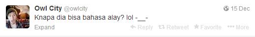 Owl City Nge Tweet Tentang Alay Lagi Gan