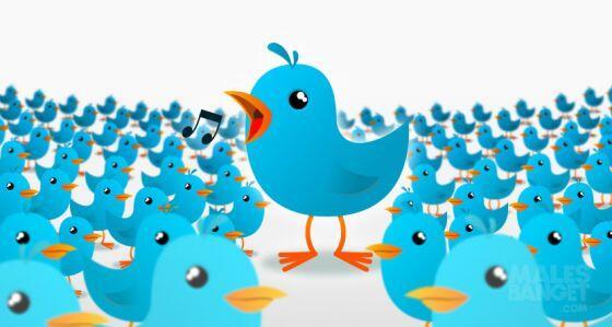 5 Alasan Kenapa Twitter Kamu DiFollow