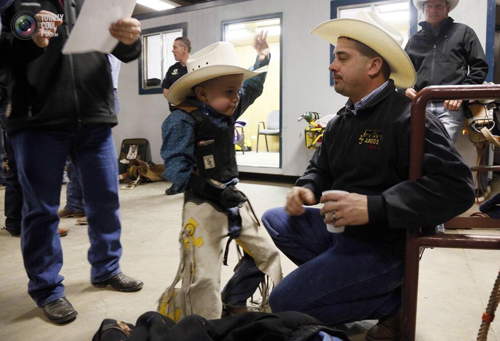 """Aksi para coboy junior dalam, """" The 108th National Western stock di Denver !"""