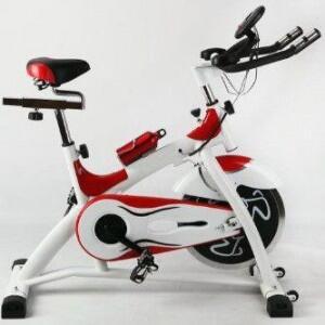 Spinning Bike Racer