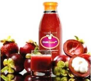 XAMthon Plus Obat segala Penyakit Kronis [jantung, diabetes, stoke, dll]