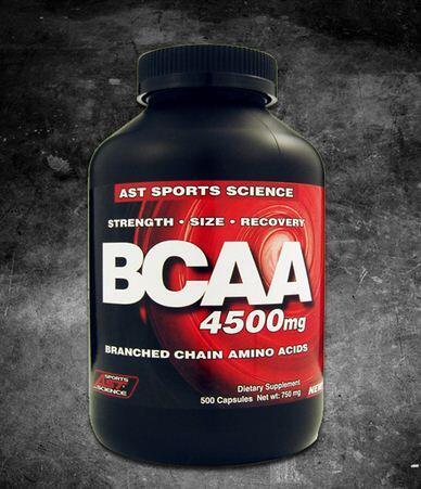 Suplemen Fitnes BCAA Eceran