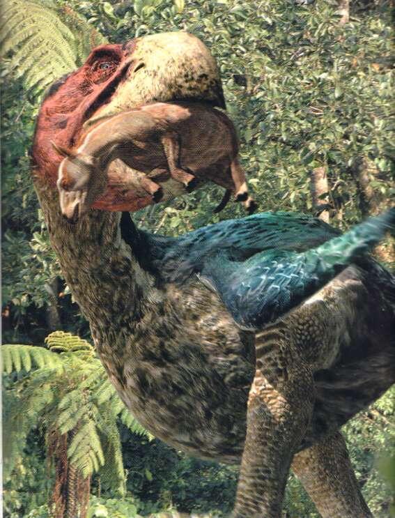 7700 Koleksi Gambar Hewan Prasejarah Yang Masih Hidup Gratis Terbaru