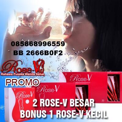 Rose V Rahasia Suami Makin Sayang Istri