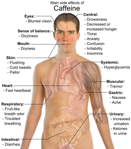 Fakta-fakta Ilmiah Tentang Kopi yang Perlu Kita Tahu