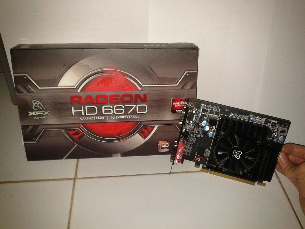 XFX AMD Radeon HD 6670 1GB DDR3