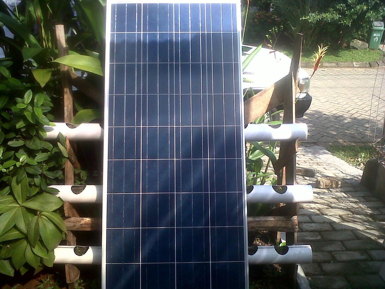 Panel Surya 150 wp