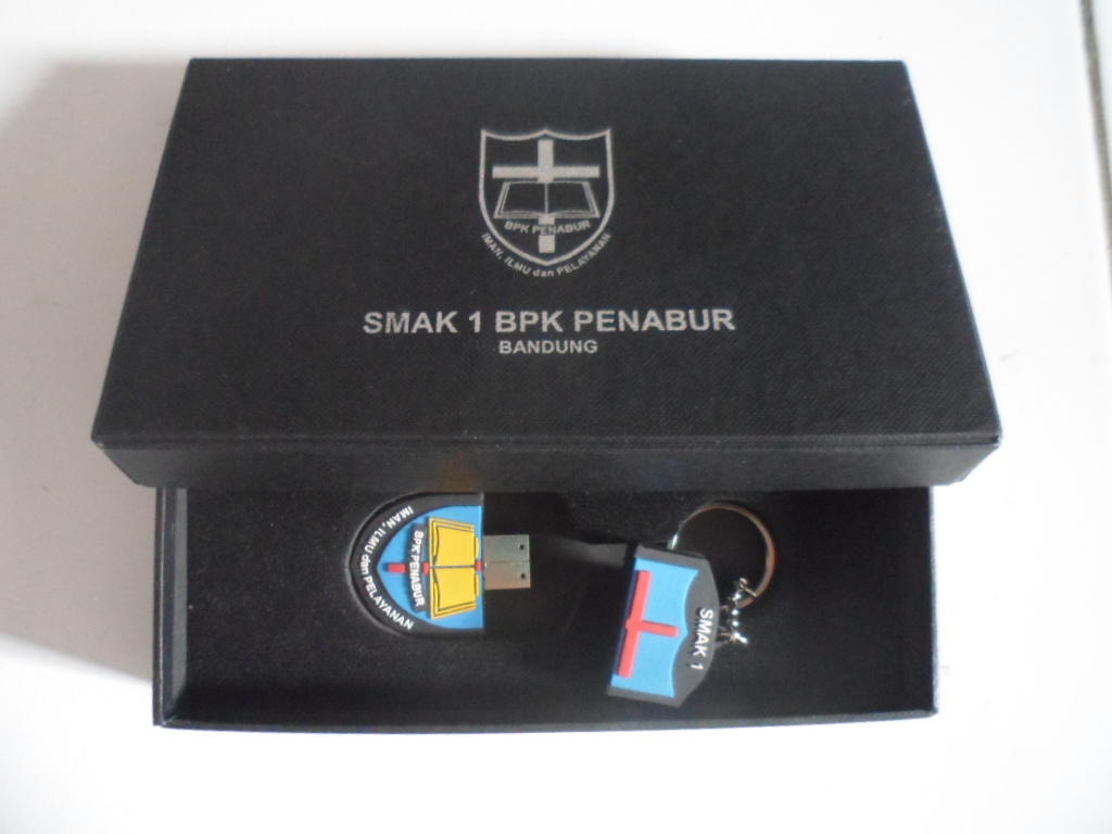 Souvenir/Merchandise Flashdisk