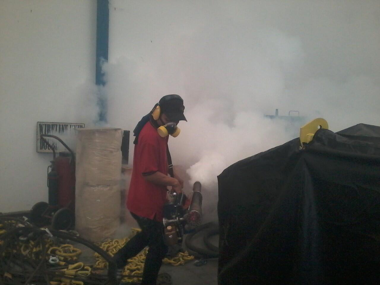 jasa fogging nyamuk DBD dan Cikungunya