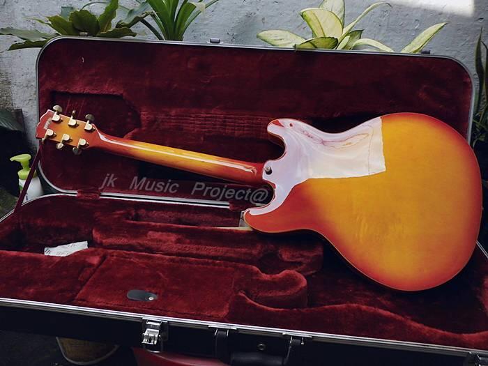gitar hollow body JnD brodher pu modief wvcn
