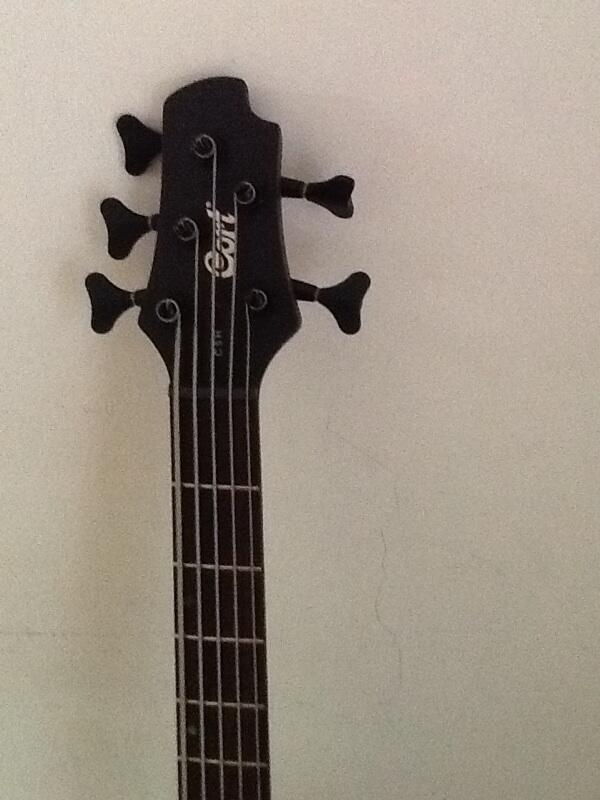 jual bass guitar court C5H