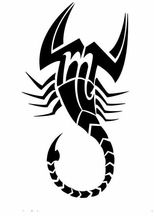 Apa Sih Arti Tato Scorpion Kalajengking Itu Tattoo Kaskus