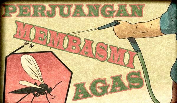 Perjuangan Membasmi Agas (Si Serangga Kecil Yang Menjengkelkan)
