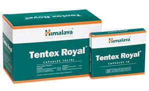 Tentex Royal Himalaya Wellness Penambah Gairah dan Kinerja Seksualitas
