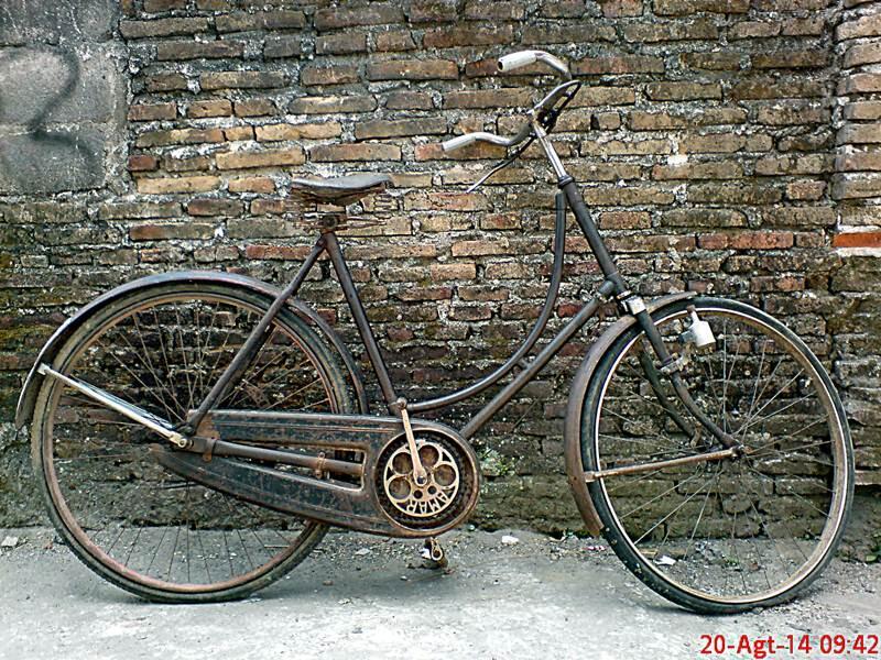 sepeda onthel kebo lawas vintage royal