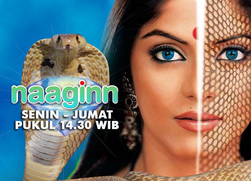 chintya sari hot photo pt