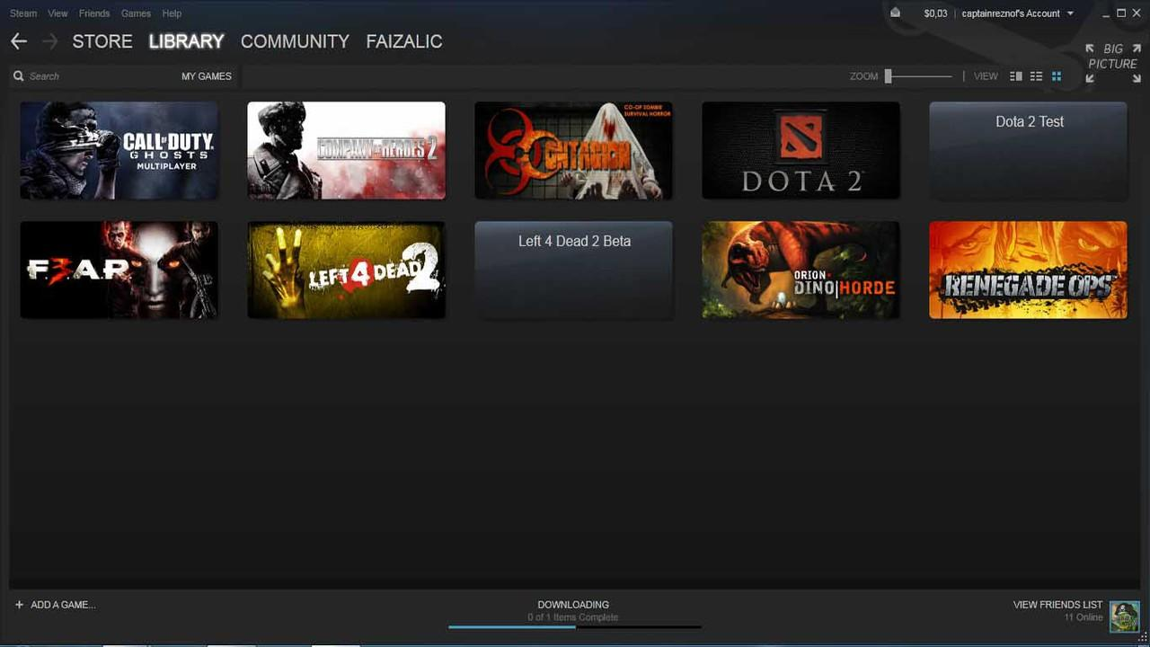 STEAM GAME (Company of heroes 2, left 4 dead 2, dota 2, renegade ops, fear 3)