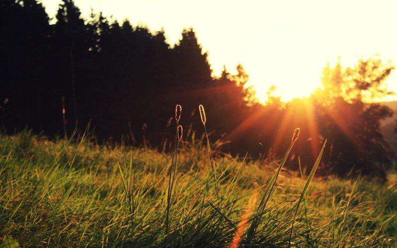 Ini Alasannya Kenapa Kamu Harus Bertemu Matahari Pagi