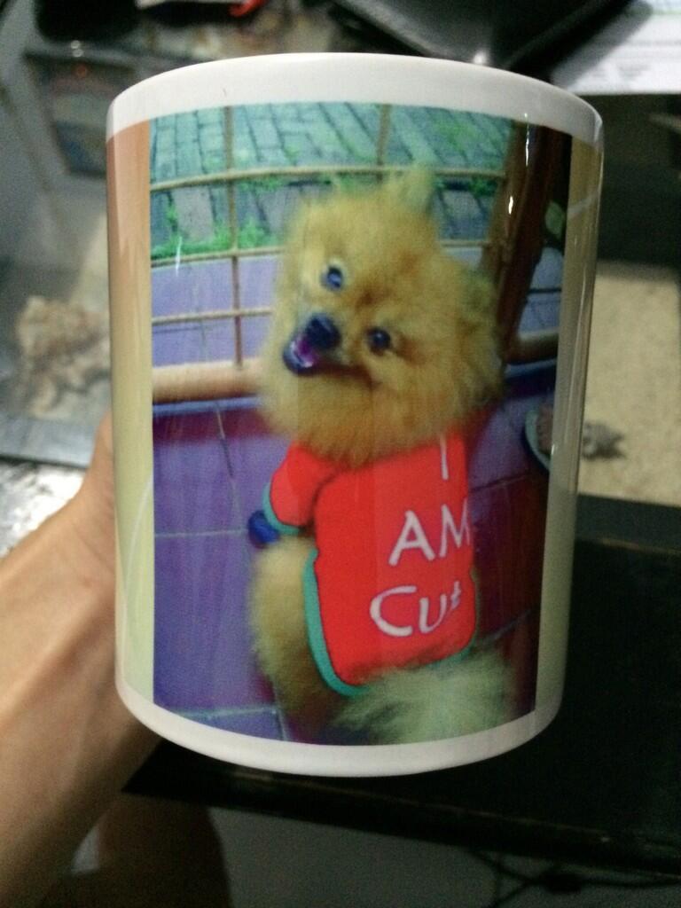 [READY STOCK] Mug Custom